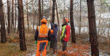 Eine Aussengruppe trifft sich im Wald für den praktischen Teil eines Motorsägekurses.
